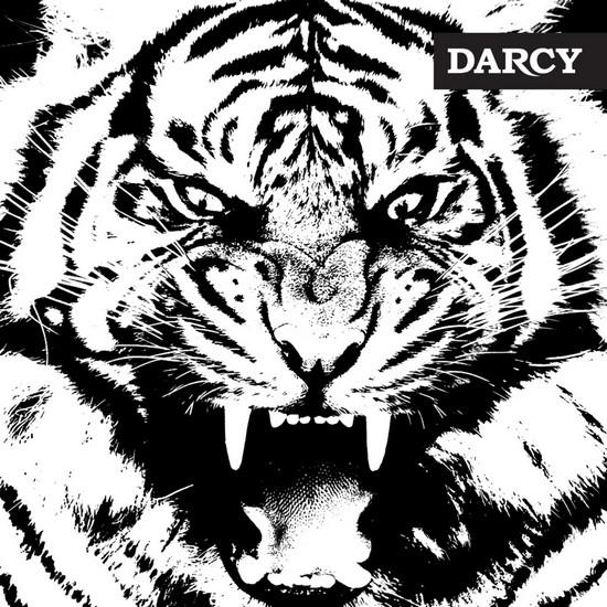 darcy-2016