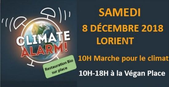 marche-climat-lorient-8-12-2018-1